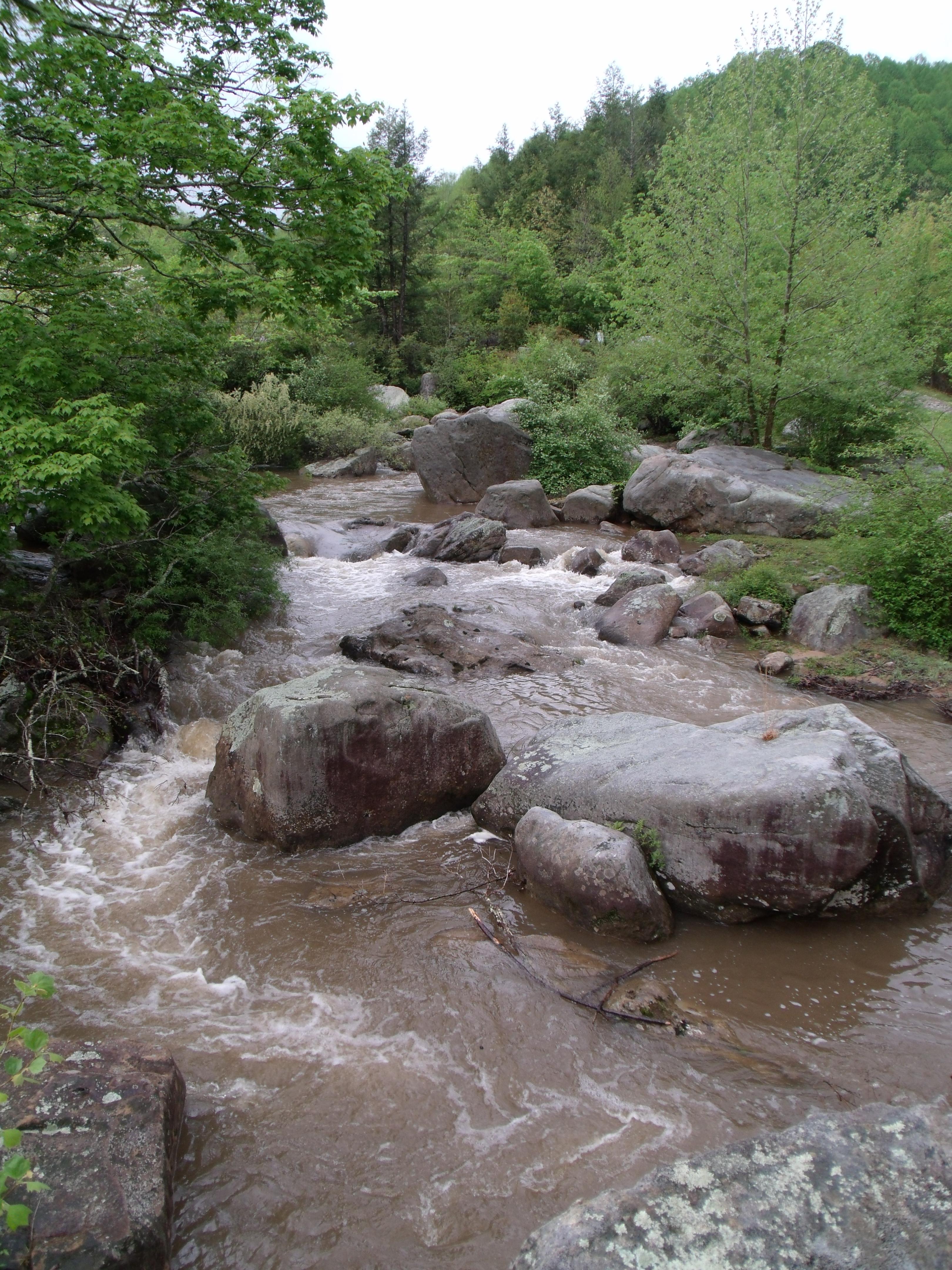 Laurel Fork
