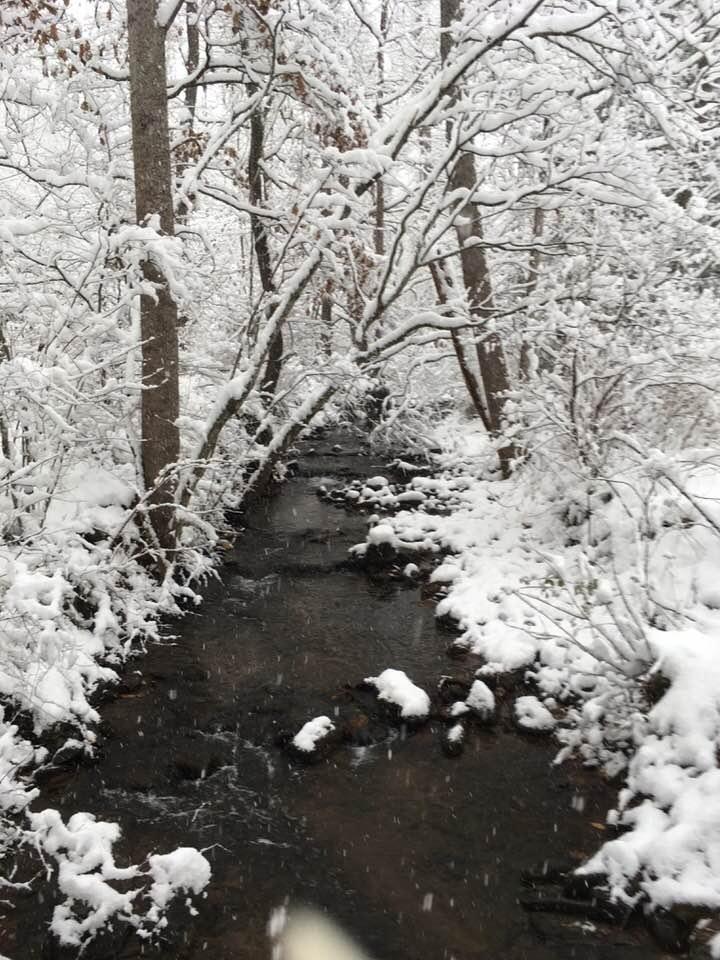 creek snow